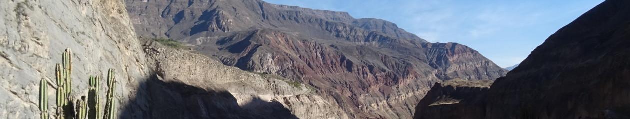 Andský vandr